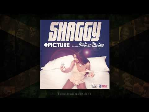 Shaggy feat. Melissa Musique - Picture (Ranch Ent. / Brooklyn Knights Ent.) January 2015
