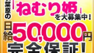 添い寝専門店ねむり姫 秋葉原店のお店動画