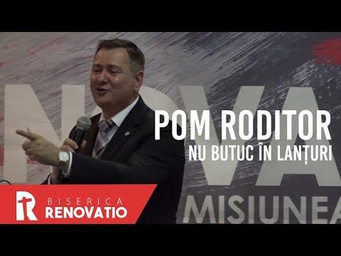Florin Ianovici - Pom roditor, nu butuc în lanțuri | BISERICA RENOVATIO