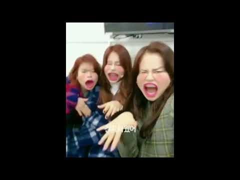 연예인 콰이 Kwai [TWICE] instagram Jeongyeon,Tzuyu,Jihyo 연예인 콰이 더빙스타그램 11/09