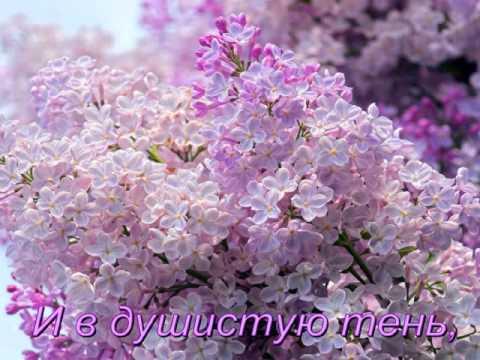 Рахманинов Сергей - Сирень