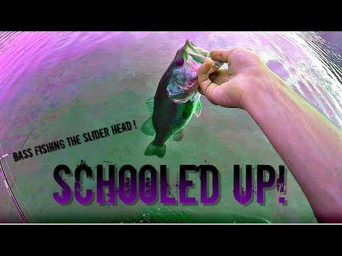 SCHOOLING BASS From SHORE: How To Use The SLIDER Head!