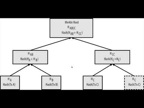 Bitcoin Internals: How Blocks Use Merkle Trees In JavaScript