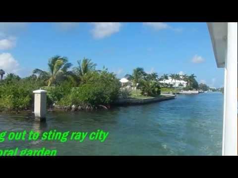 Jamaica  &  Grand Cayman