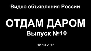 Отдам даром. Выпуск №10 - Видео объявления России
