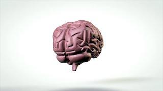 뇌종양의 증상과 치료 [TBC클리닉건강365]