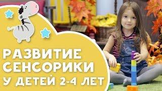 Развитие сенсорики у детей 2-4 лет [Любящие мамы]