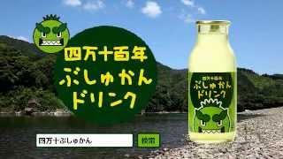 「ぶしゅかん」は高知県の四万十地域では昔から愛されている酢みかんで...