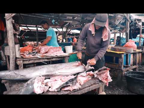 TECHNIQUE CUTTING SWORDFISH (IKAN MERLIN)    STREET FOOD INDONESIA    XIPHIAS GLADIUS