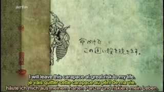 663114 (La cigale du Japon) I. Hirabayashi ZDF 2011