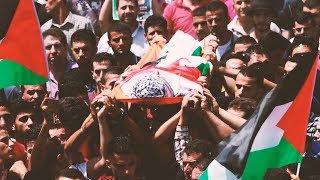 مصر العربية   59 شهيد فلسطيني في ذكرى الـ 70 بالنكبة