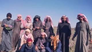 شيلة /زان الربيع وزان جو المطاليع المنشد عالي بركه