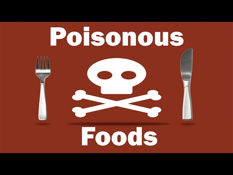 World's Most Poisonous Foods