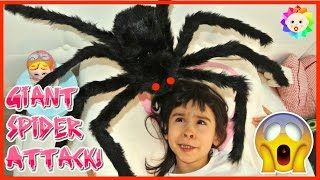 baby crying real giant spider attack girl sleeping in her bed toy freaks out goes family crazy