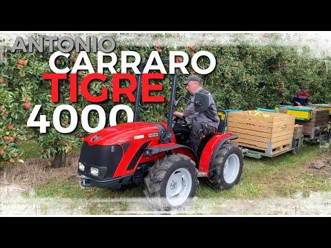 Obsthof Raddatz - ANTONIO CARRARO TIGRE 4000 I Wie macht er sich in der Ernte? I Hat er POWER?