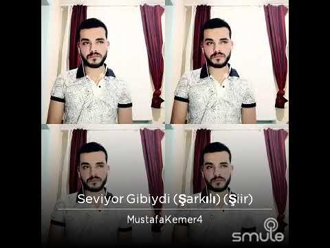 Seviyor Gibiydi Mustafa Kemer