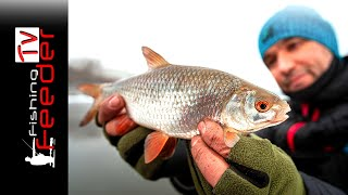 Зимняя РЫБАЛКА 2020 на фидер Плотва или БАТОНЫ Рыболовный отчет Feeder Fishing TV