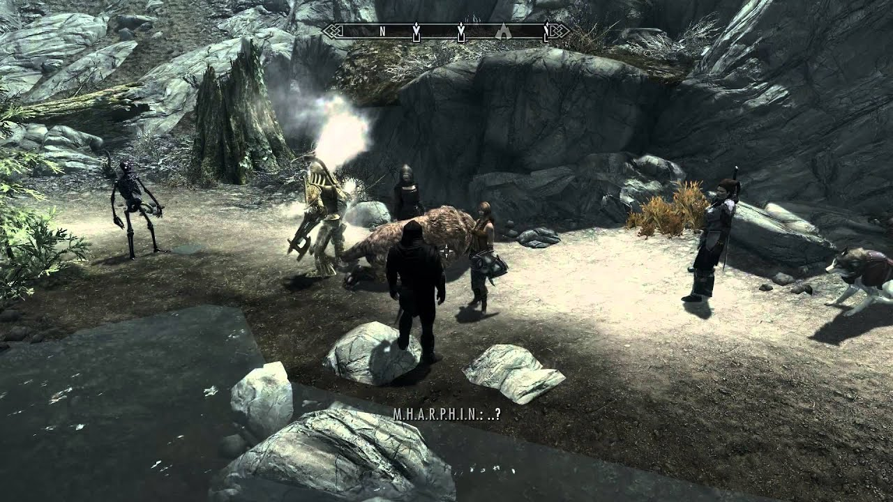 Skyrim follower mod's multiple followers and shrouded armor mod