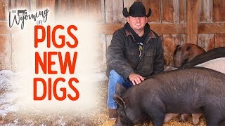 building-the-pigs-a-place-in-the-barn-project-list