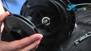 Intex pool pump motor teardown for Pool pump motors troubleshooting