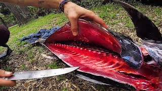 Catch and Cook Tuna | Briggsy Fishing Vlog