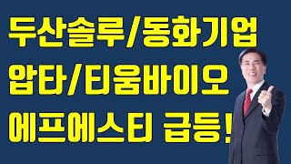 [주식]마감시황/두산솔루스/에프에스티/압타바이오/티움바…