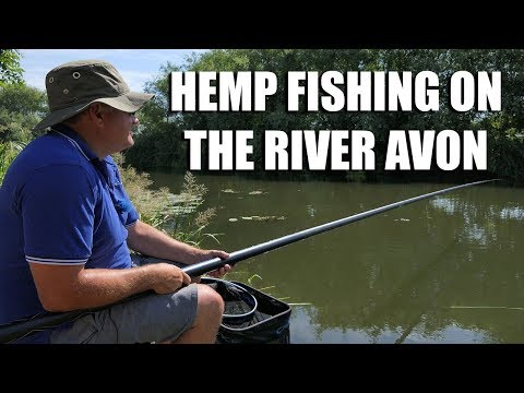 Hemp Fishing On The River Avon