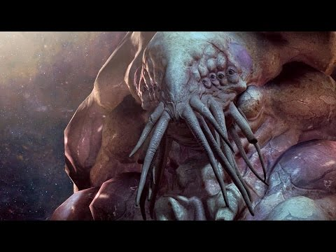 Artanis Was Pleased To See His Former Master Again But The Vision Revealed Himself Be A Xelnaga