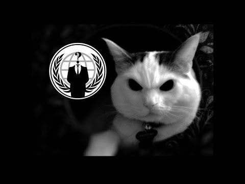 Anonymous - The Hacker Wars