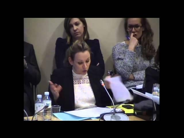 Question d'Axelle Lemaire à Rober Badinter en commission des affaires européennes - 11 février 2014