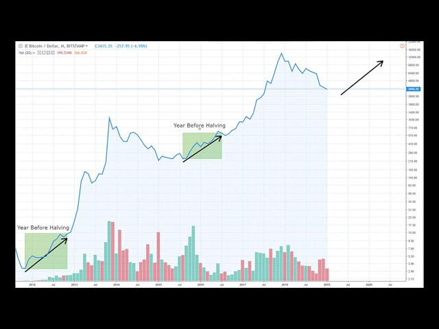 Bitcoin Cash 4/07/2020 & Bitcoin 5/24/2020 Halving! #Btc #Bitcoin #Bch #Bitcoincash