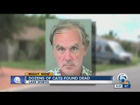 Surprise discovery in suburban Lake Worth