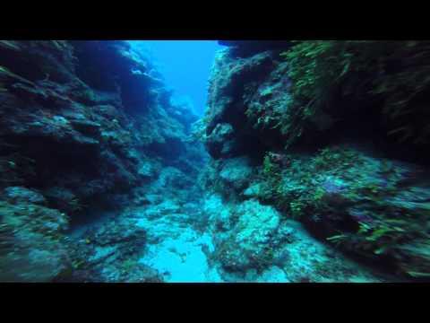 Grand Cayman - January 2015