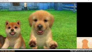 Citra 3DS Emulator - Nintendogs + cats: Golden Retriever & New Friends ingame 1080p (ad4097e)