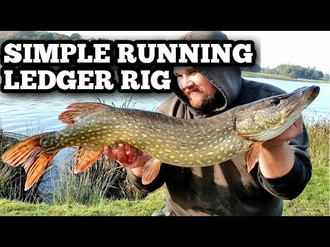 Pike Fishing  Simple Ledger Rig
