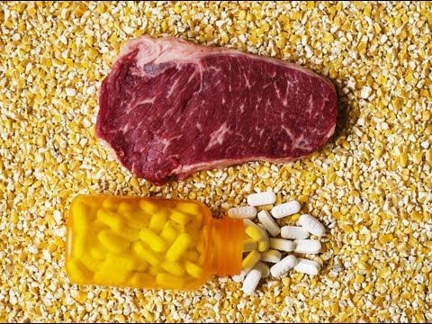 antibiotics in animal feed essay Animal feed - grain or growth hormones  but potentially hundreds of residues of toxic and artificial animal feed  29 million pounds of antibiotics.