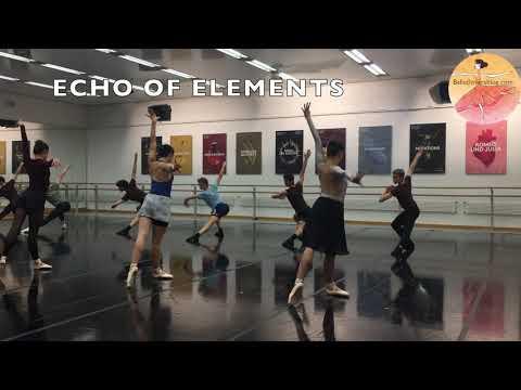 Open Rehearsal ECHO OF ELEMENTS by Junior Ballet Zurich