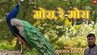||Zadipatti Super Hit Song || Mora Re Mora|| Yuvraj Pradhan  ||