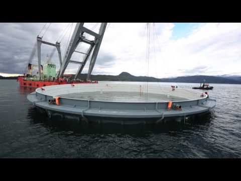 Aquafarm Equipment | Neptun - The world's largest closed fish cage in grp