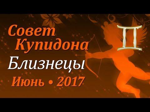 Гороскоп на год Петуха - vip-