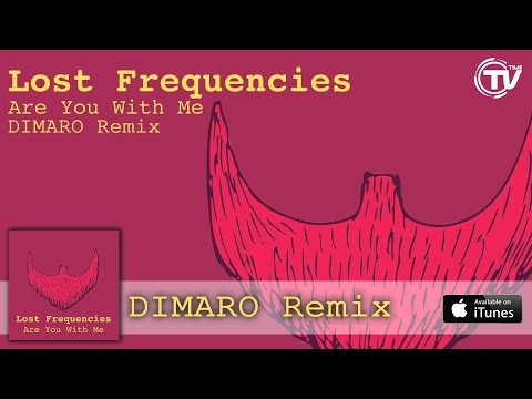 [1 hour loop]Lost Frequencies -Are You With Me [DIMARO Remix]