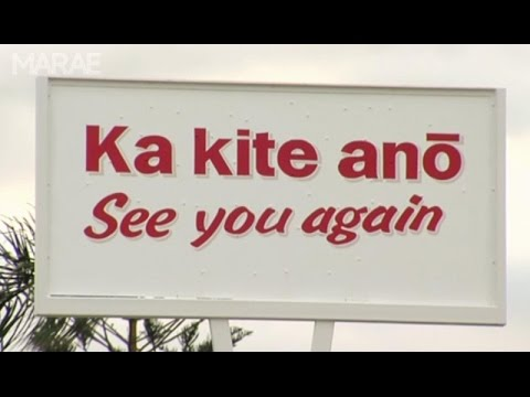 Māori-English signage guide launched to make Te Reo more visible