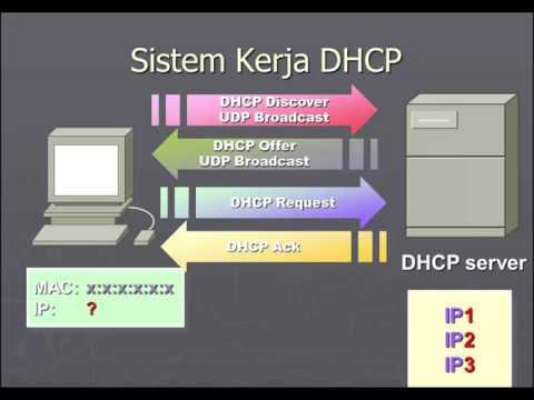 Explaining Application Protocol DHCP