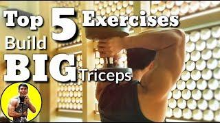 Top 5 Exercises Build BIG TRICEPS | Top 5 Bài Tập Xây Dựng Cơ Tay Sau Tốt Nhất | Ryan Long Fitness