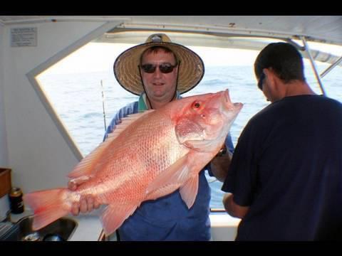 fish hookup website