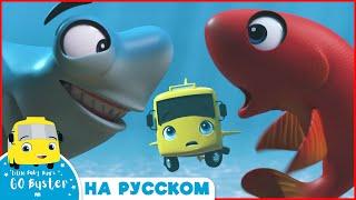 Бастер и Рыбы Мультики для детей Автобус Бастер Детские Песни