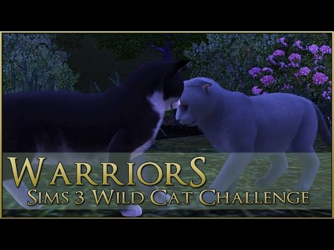 Between the Forest and the Sea || Warrior Cats Sims 3 Legacy - Episode #75
