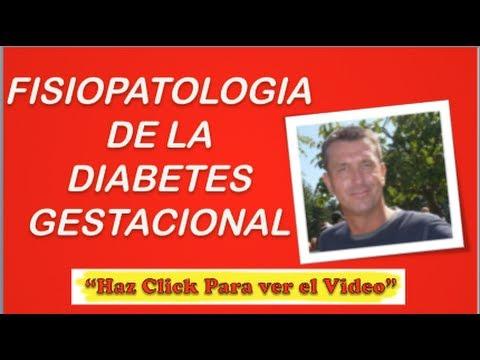 Fisiopatologia De La Diabetes Gestacional | Diabetes