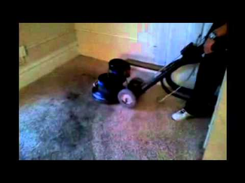 Carpet Cleaning Marshalltown