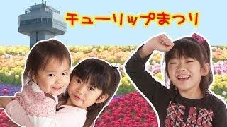 国営木曽三川公園チューリップまつり2014 にゃーにゃちゃんねる ピクニック Tulip Festival